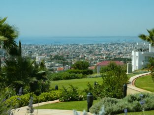 Mesa Geitonia / Agios Athanasios Plot