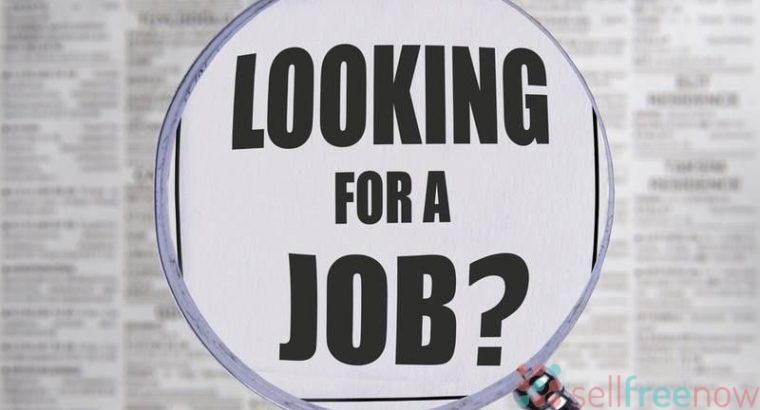 Professional Job to take service and get paid!