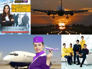Best 10 Aviation Training Institute in Delhi Noida