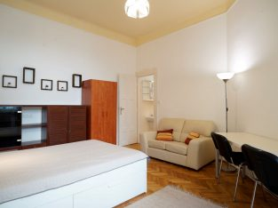Youthful, bright, fully renovated in Budapest