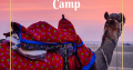 Jaisalmer Desert Camp- The Golden Camp